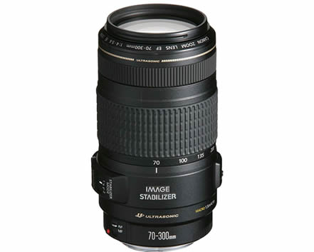 Canon EF 70-300mm Lens