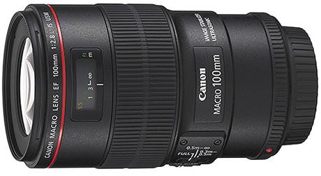 Canon EF 100mm f 2.8 Macro USM Lens